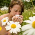 Strona o alergiach – tekst dla alergików